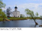 Церковь Покрова на Нерли (2010 год). Редакционное фото, фотограф Дмитрий Девин / Фотобанк Лори