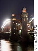 Купить «Большеохтинский мост. Санкт-Петербург», эксклюзивное фото № 7219372, снято 15 ноября 2014 г. (c) Александр Щепин / Фотобанк Лори
