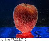 Купить «Яблоко опущенное в воду», фото № 7222740, снято 24 февраля 2015 г. (c) Литвяк Игорь / Фотобанк Лори