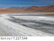 bolivia - laguna colorada (red lagoon), shallow salt lake in the southwest of the altiplano of bolivia, within eduardo avaroa andean fauna national reserve.Bolivia, the Atacama Desert, Hot Springs. Стоковое фото, агентство BE&W Photo / Фотобанк Лори