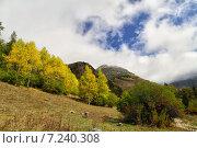 Карачаево-Черкесия. Стоковое фото, фотограф олег данильченко / Фотобанк Лори
