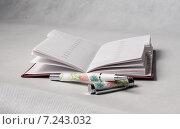 Открытая записная книжка и шариковая ручка. Стоковое фото, фотограф Полина Соколова / Фотобанк Лори