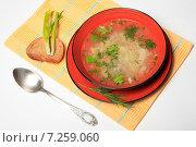 Купить «Суп, хлеб и зеленый лук на желтой салфетке», эксклюзивное фото № 7259060, снято 15 апреля 2015 г. (c) Яна Королёва / Фотобанк Лори