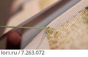 Купить «Вышивание крестиком. Крупный план», видеоролик № 7263072, снято 15 апреля 2015 г. (c) Игорь Кузнецов / Фотобанк Лори