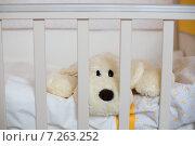 Мягкая игрушка лежит в детской кроватке. Стоковое фото, фотограф Светлана Пальцева / Фотобанк Лори