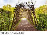 Ботаническая арка в парке Вильгельмшолль (Bergpark Wilhelmshöhe), в городе Кассель (Kassel), Германия (2014 год). Стоковое фото, фотограф Сергей Новиков / Фотобанк Лори