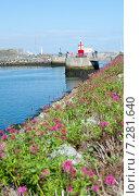 Купить «Навигационный маяк в порту Хоут , Дублин, Ирлания», фото № 7281640, снято 21 сентября 2014 г. (c) Татьяна Кахилл / Фотобанк Лори