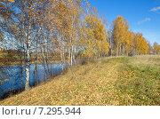 Купить «Осень на реке Уче», эксклюзивное фото № 7295944, снято 13 октября 2013 г. (c) Елена Коромыслова / Фотобанк Лори