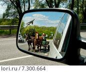 Мужчина едет в телеге с двумя лошадьми, отражение в зеркале заднего вида автомобиля (2011 год). Редакционное фото, фотограф Николай Полищук / Фотобанк Лори