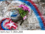 Купить «Цветы в старом ботинке на стене здания. Стамбул, Турция», фото № 7303268, снято 19 апреля 2015 г. (c) Илюхина Наталья / Фотобанк Лори