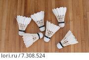 Воланы для бадминтона, перьевые. Стоковое фото, фотограф yaray / Фотобанк Лори