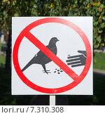 Купить «Табличка, запрещающая кормить птиц», эксклюзивное фото № 7310308, снято 16 сентября 2014 г. (c) Елена Коромыслова / Фотобанк Лори