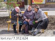 Пожилые женщины на скамейке в парке (2015 год). Редакционное фото, фотограф Ольга Алексеенко / Фотобанк Лори