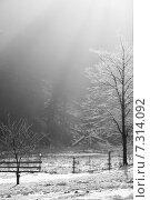 Купить «Зимнее утро в деревне», фото № 7314092, снято 24 января 2013 г. (c) Попова Евгения / Фотобанк Лори