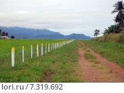 Купить «Гравийная дорога вдоль забора аэродрома, Папуа-Новая Гвинея», фото № 7319692, снято 12 мая 2011 г. (c) Daniil Nasonov / Фотобанк Лори