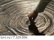 Купить «Круги на воде», фото № 7329896, снято 23 июня 2013 г. (c) Дмитрий Чулков / Фотобанк Лори