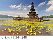 Купить «Ulun Danu temple Beratan Lake in Bali Indonesia», фото № 7344248, снято 17 декабря 2018 г. (c) BE&W Photo / Фотобанк Лори