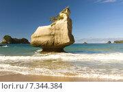 Купить «New Zealand, Coromandel Peninsula», фото № 7344384, снято 16 декабря 2019 г. (c) BE&W Photo / Фотобанк Лори