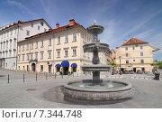 Купить «Slovenia, Ljubljana, Fountain in Novi Trg or New Square, Ljubljana», фото № 7344748, снято 13 декабря 2019 г. (c) BE&W Photo / Фотобанк Лори