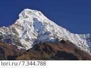 Купить «Nepal, Annapurna Conservation Area, Annapurna South view from Tadapani, Nepal Himalaya», фото № 7344788, снято 20 июля 2019 г. (c) BE&W Photo / Фотобанк Лори