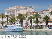 Купить «Croatia, Split, Riva Promenade, Split», фото № 7345220, снято 26 марта 2019 г. (c) BE&W Photo / Фотобанк Лори