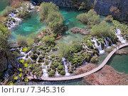 Купить «Croatia, Plitvicka Jezera, Plitvice Lakes National Park, Plitvice Lakes National Park», фото № 7345316, снято 18 декабря 2018 г. (c) BE&W Photo / Фотобанк Лори