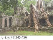 Cambodia, Siem Reap, Angkor, Preah Khan, Hindu Buddhist temple. Стоковое фото, агентство BE&W Photo / Фотобанк Лори