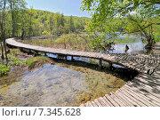 Купить «Croatia, Plitvicka Jezera, Plitvice Lakes National Park, Plitvice Lakes National Park», фото № 7345628, снято 18 декабря 2018 г. (c) BE&W Photo / Фотобанк Лори