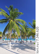Купить «Perfect Caribbean beach in Tulum, MexicoMexico, Tulum, beach», фото № 7346620, снято 16 декабря 2019 г. (c) BE&W Photo / Фотобанк Лори