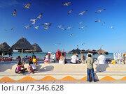 Купить «Progreso beach, Yucatan Peninsula MexicoMexico, Yucatan Peninsula, Progreso beach», фото № 7346628, снято 16 декабря 2019 г. (c) BE&W Photo / Фотобанк Лори