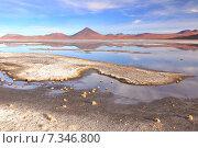 Купить «Bolivia, Laguna Colorada, Red Lagoon, Shallow Salt Lake in the Southwest of the Altiplano of Bolivia, within Eduardo Avaroa Andean Fauna National Reserve», фото № 7346800, снято 26 марта 2019 г. (c) BE&W Photo / Фотобанк Лори