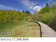 Купить «Croatia, Plitvicka Jezera, Plitvice Lakes National Park, Plitvice Lakes National Park», фото № 7346864, снято 18 декабря 2018 г. (c) BE&W Photo / Фотобанк Лори