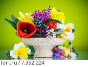 Купить «Букет весенних цветов на зеленом фоне», фото № 7352224, снято 24 апреля 2015 г. (c) Peredniankina / Фотобанк Лори
