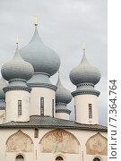 Купить «Вид на купола собора Успения Пресвятой Богородицы в Тихвине в пасмурный летний день», эксклюзивное фото № 7364764, снято 21 июня 2014 г. (c) Самохвалов Артем / Фотобанк Лори