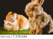 Купить «Ginger bunny rabbit», фото № 7378644, снято 6 февраля 2015 г. (c) Wavebreak Media / Фотобанк Лори