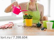 Купить «close up of woman hands planting roses in pot», фото № 7398604, снято 3 марта 2015 г. (c) Syda Productions / Фотобанк Лори