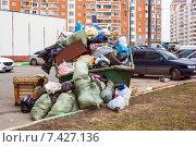 Купить «Переполненный мусорный контейнер в городе», фото № 7427136, снято 19 апреля 2015 г. (c) Татьяна Назмутдинова / Фотобанк Лори