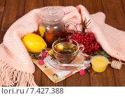 Купить «Чай с красной калиной, медом и лимоном. Средства от простуды», фото № 7427388, снято 25 октября 2013 г. (c) Сергей Молодиков / Фотобанк Лори