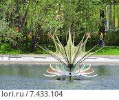Купить «Объемный цветок на поверхности Пионерского пруда в Парке Горького в Москве», эксклюзивное фото № 7433104, снято 14 мая 2015 г. (c) lana1501 / Фотобанк Лори