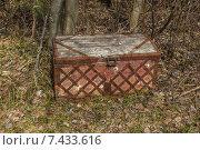 Старый сундук в лесу. Стоковое фото, фотограф Ткач Александр / Фотобанк Лори