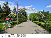 Купить «Парк им. 50-летия Октября. Москва», эксклюзивное фото № 7439608, снято 12 мая 2015 г. (c) lana1501 / Фотобанк Лори