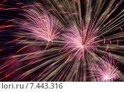 Салют в честь Дня Победы 9 мая (2015 год). Стоковое фото, фотограф Андрей Апрельский / Фотобанк Лори