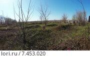 Купить «Заброшенное кладбище», видеоролик № 7453020, снято 11 апреля 2015 г. (c) Потийко Сергей / Фотобанк Лори