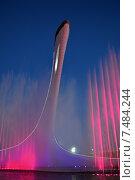 Купить «Световое и музыкальное шоу в чаше Олимпийского огня (Сочи, Олимпийский парк)», эксклюзивное фото № 7484244, снято 19 мая 2015 г. (c) Александр Замараев / Фотобанк Лори