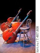 Купить «Два контрабаса на сцене концертного зала», фото № 7487808, снято 17 апреля 2012 г. (c) Татьяна Белова / Фотобанк Лори
