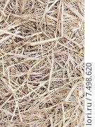 Купить «dry grass or hay texture», фото № 7498620, снято 7 февраля 2015 г. (c) Syda Productions / Фотобанк Лори