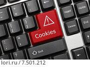 Купить «Концептуальная клавиатура. Клавиша Cookies», фото № 7501212, снято 30 сентября 2011 г. (c) Самохвалов Артем / Фотобанк Лори