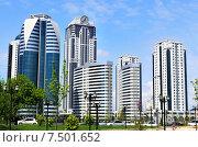 Купить «Вид на Грозный-сити из городского парка города Грозного», фото № 7501652, снято 3 мая 2015 г. (c) Елена Перминова / Фотобанк Лори