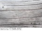 Купить «Текстура старой древесины», эксклюзивное фото № 7505972, снято 1 июня 2015 г. (c) Елена Коромыслова / Фотобанк Лори
