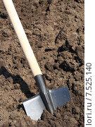 Садовая лопата в земле. Стоковое фото, фотограф Сергей Боженов / Фотобанк Лори